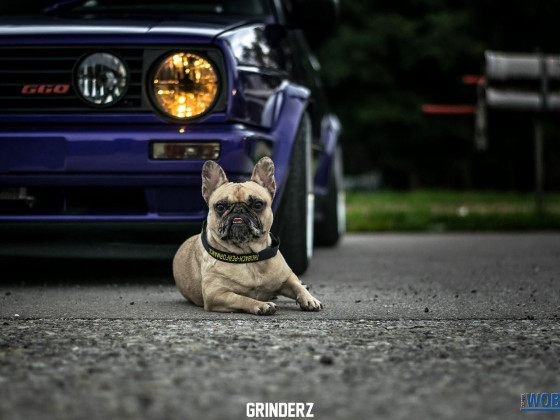 Shooting by Grinderz